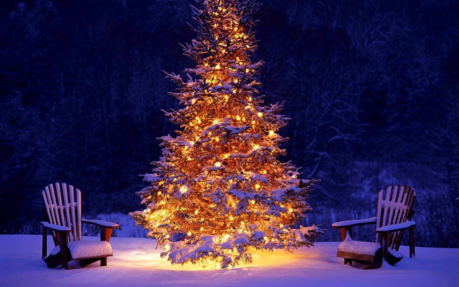 Обои зимние картинки новый год