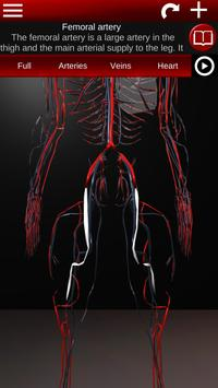 Circulatory System in 3D (Anatomy) screenshot 3