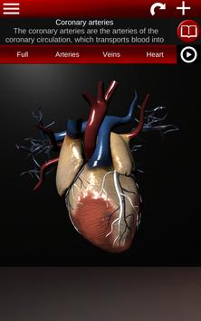 Circulatory System in 3D (Anatomy) screenshot 12