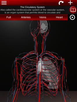 Circulatory System in 3D (Anatomy) screenshot 16
