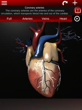 Circulatory System in 3D (Anatomy) screenshot 19