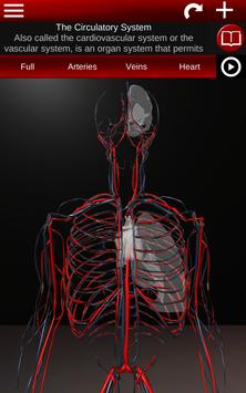 Circulatory System in 3D (Anatomy) screenshot 8