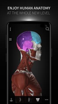 Anatomyka - 3D Human Anatomy Atlas screenshot 6
