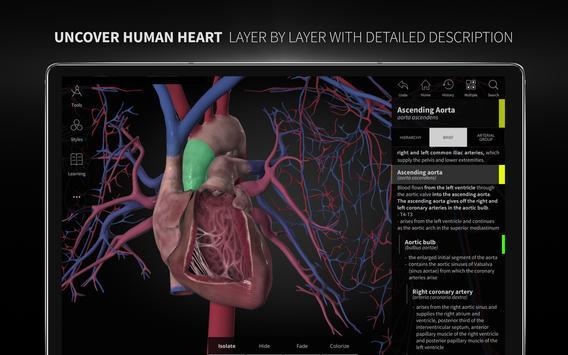Anatomyka - 3D Human Anatomy Atlas screenshot 10