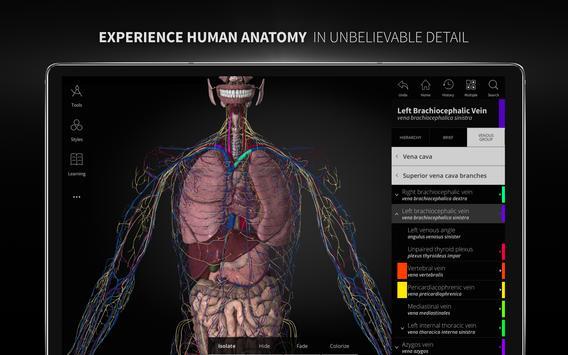 Anatomyka - 3D Human Anatomy Atlas screenshot 16