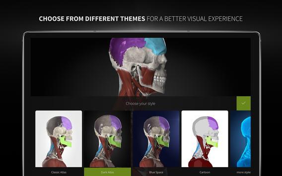 Anatomyka - 3D Human Anatomy Atlas screenshot 22
