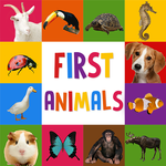 First Words for Baby: Animals APK