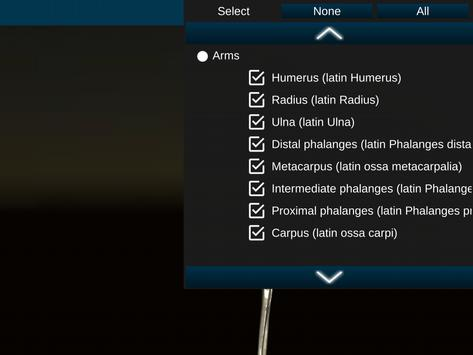 Osseous System in 3D (Anatomy) screenshot 18