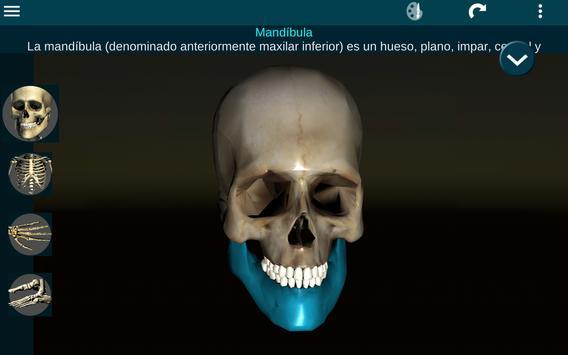 Sistema Oseo en 3D (anatomía) captura de pantalla 8