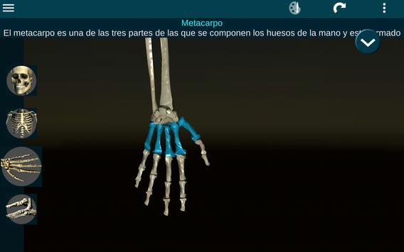 Sistema Oseo en 3D (anatomía) captura de pantalla 10