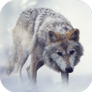 Wolf Sounds APK