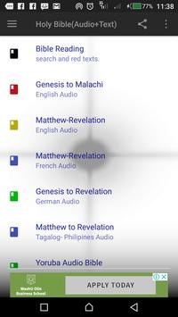 Bible- Audio and Text with Translations screenshot 1