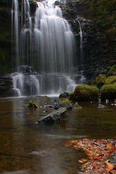 Natural landscapes screenshot 1