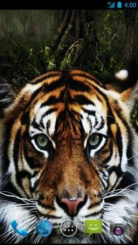 Tiger Wallpapers screenshot 1