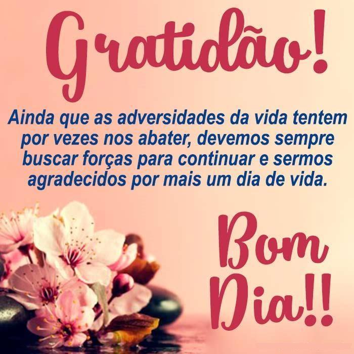Bom Dia Frases 2019 For Android Apk Download