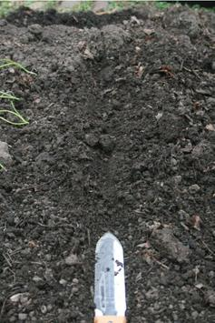 Composting screenshot 1