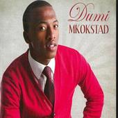 Dumi Mkokstad Songs icon