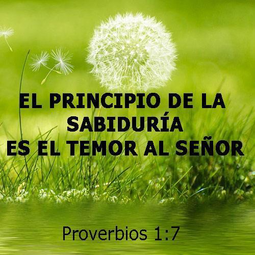 Versiculos Biblicos De Promesas De Dios: Versículos Bíblicos Pour Android