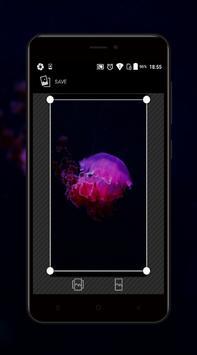 Underwater Wallpaper screenshot 3