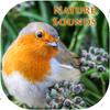 Relaxing nature music Zeichen