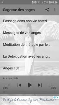 Sagesse des anges - Audiobooks poster