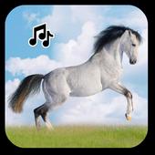 Horse sounds icon