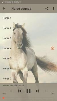 Horse sounds poster