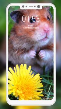 Hamster Wallpapers screenshot 5