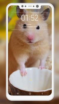 Hamster Wallpapers screenshot 9