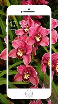 Orchid Wallpaper screenshot 7