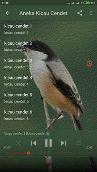 Master Kicau Burung Cendet screenshot 2