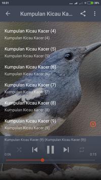 Suara Burung Kacer Betina Mp3 screenshot 4