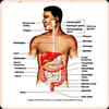Anatomy and Physiology simgesi