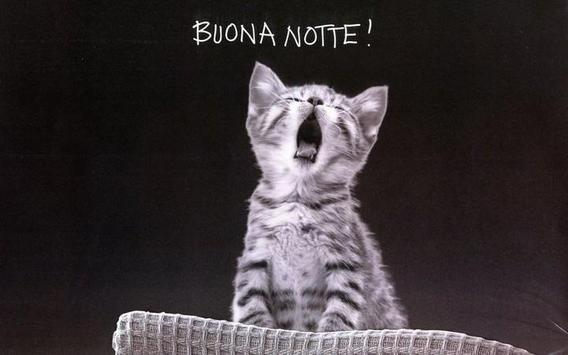 Buona Notte 2019 poster
