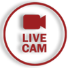 Live Free Cams - Meet And Free Chat Girls أيقونة
