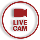 Live Free Cams - Free Chat Girls - Chat Sexy Girls иконка