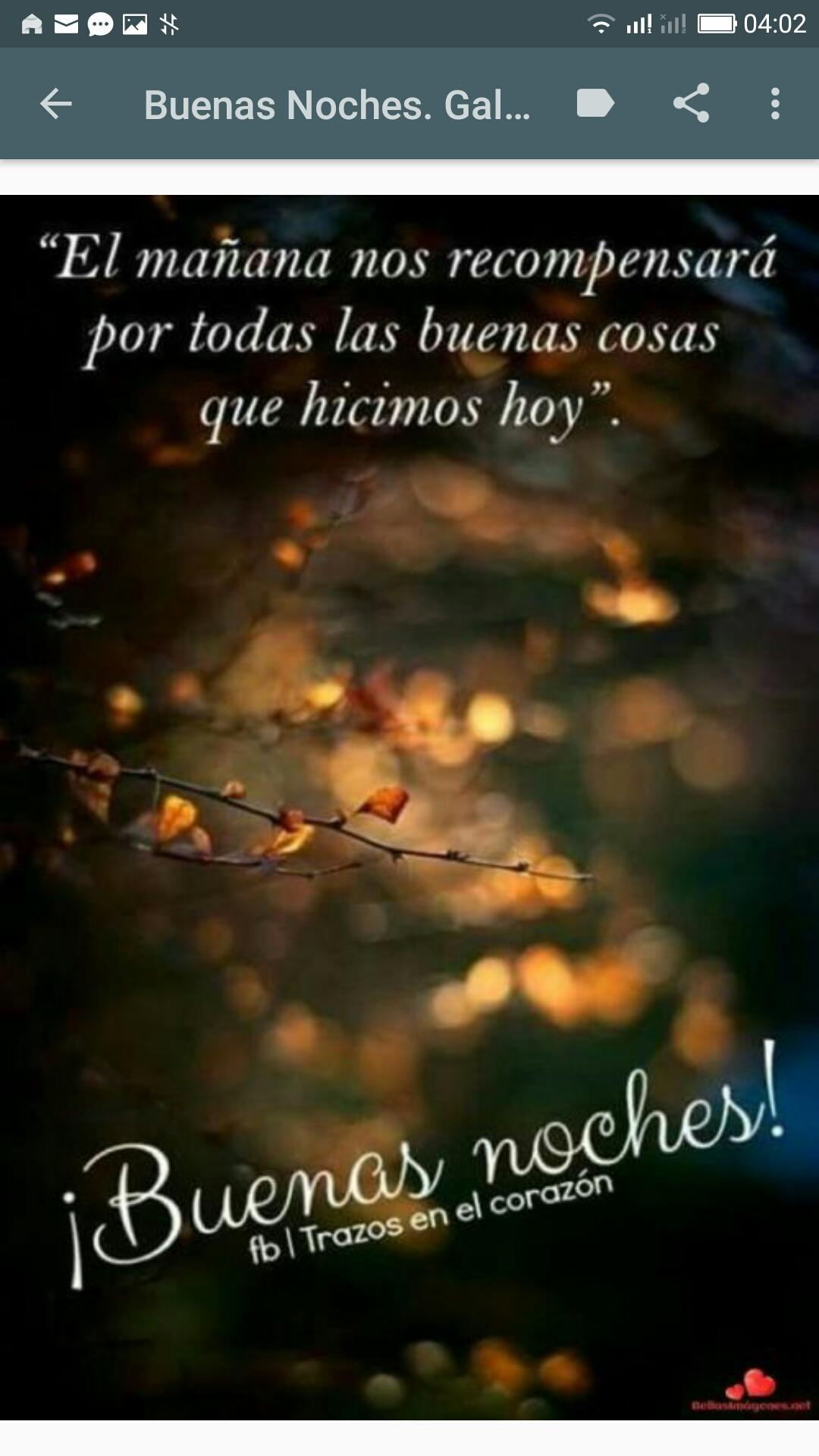 Buenas Noches Hermosas Frases For Android Apk Download