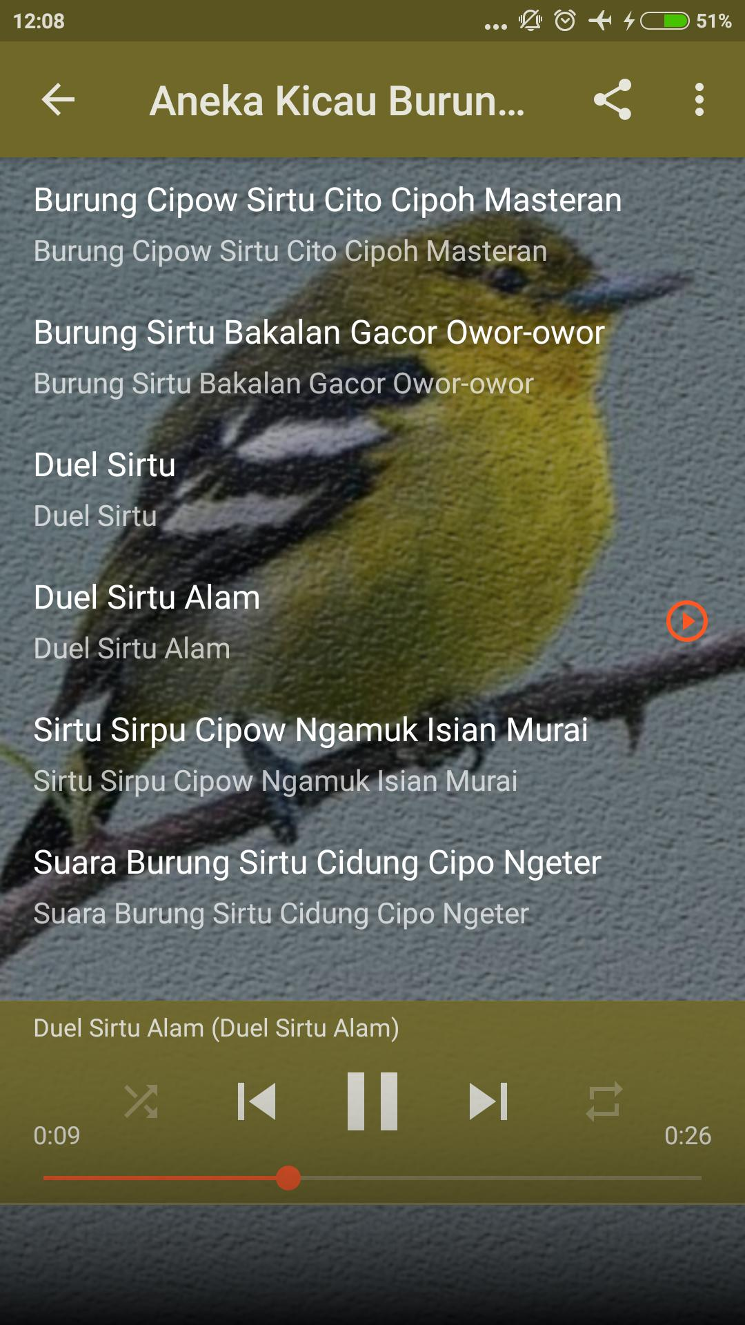 Suara Sirtu Betina Gacor For Android Apk Download