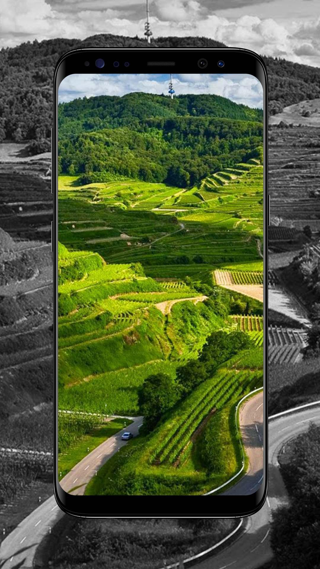 Unduh 101 Background Foto Alam HD Gratis