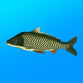 True Fishing. Fishing simulator v1.14.4.678 (Modded)