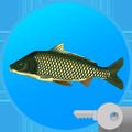 True Fishing (key). Fishing simulator