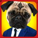 Animal Face aplikacja