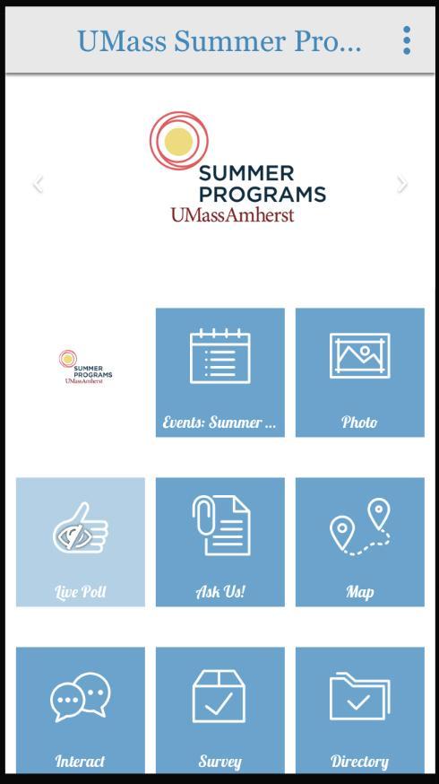 UMass Summer Programs poster