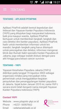 PITA PINK poster