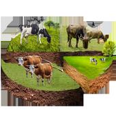 مزرعة ألبان icon