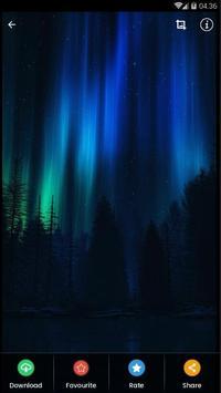 Black Aurora Wallpaper HD poster