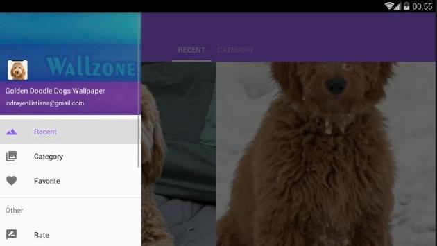 Golden Doodle Dog Wallpaper screenshot 7
