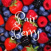 Pair Berry icon