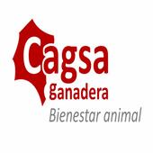Cagsa icon