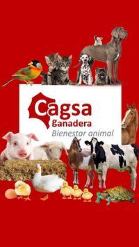 Cagsa poster
